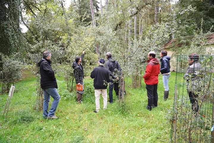 Groupe de personnes à une animation autour des arbres