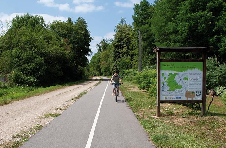 Homme sur un vélo, sur une voie verte dans la forêt